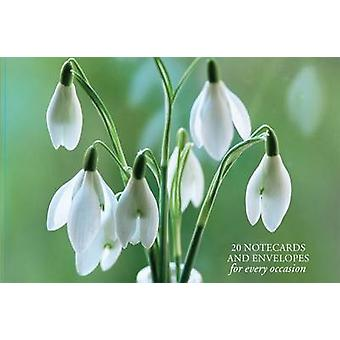 Card Box of 20 Notecards and Envelopes Snowdrop by Peony Press