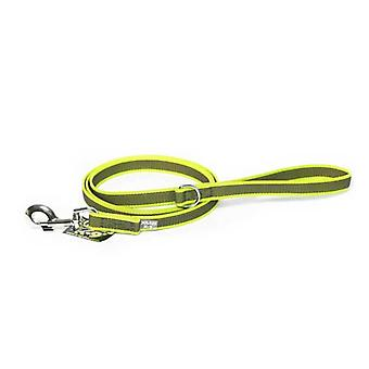 """Julius-K9 Color & Grey Super-Grip Leash Neon-GreyWidth (0.7"""" / 20mm) Length (6ft / 1.8 m) With Handle and """"D"""" ring , Max for 110lb/ 50 kg Dog"""