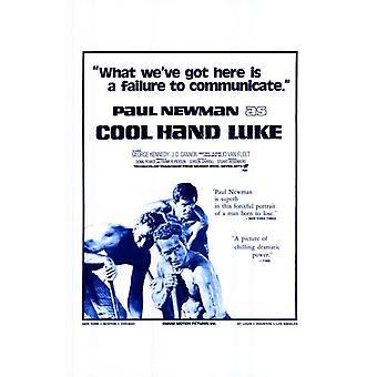 Cool Hand Luke Movie Poster (11 x 17)
