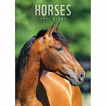 Otter House 2021 Horses A5 Diary