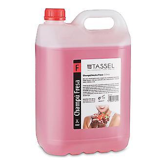 Shampooing Eurostil Fraise (5 L)