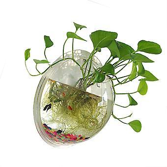 1 Gallon tiszta akril függőfal szerelt fish bowl aquaponikus tartály