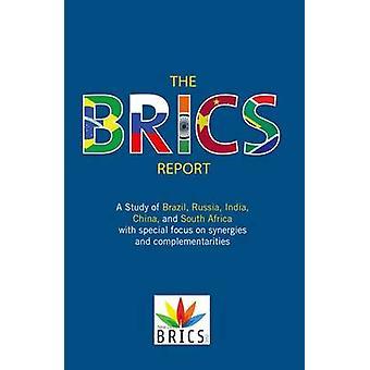 Der BRICS-Bericht Eine Studie über Brasilien Russland Indien China und Südafrika mit besonderem Fokus auf Synergien und Komplementaritäten von BRICS