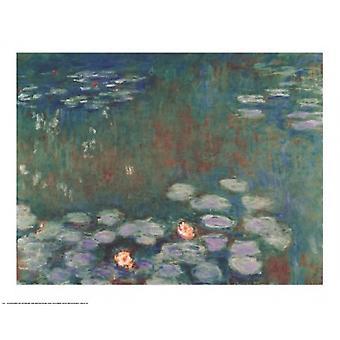 Plakat-Druck Seerosen von Claude Monet (30 x 24)