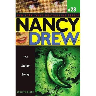 Die gestohlenen Knochen (Nancy Drew: Girl Detective (Aladdin))