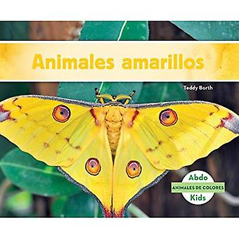 Animales Amarillos (gul dyr) (Animales de Colores (dyr farger))