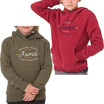 Djur pojkar Kids Atlas Långärmad casual Pullover Hoody tröja hoodie topp