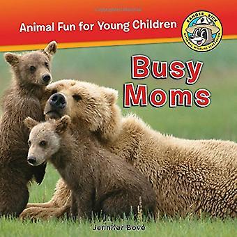 Treffen Ranger Rick Jr.: Busy Moms (Ranger Rick: tierischer Spaß für kleine Kinder)