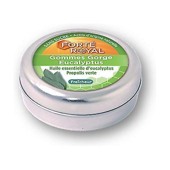 Eucalyptus throat gum 45 g (Eucalyptus)