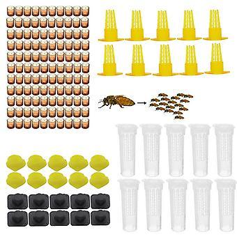 完全な蜂の女王の王の飼育のキット、システムのケージの蜂のツール セット