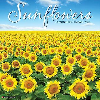 Solrosor 2022 Väggkalender av Willow Creek Press