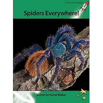 Spiders Everywhere! by Rachel Walker - 9781877506772 Book