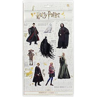 Harry Potter Magnetic Set A Movie Characters 8-piece, printed, 100% plastic, in blister packaging.