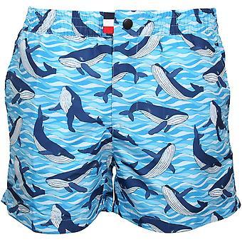 Franks Antarctic Orca Print Swim Shorts, Antartic Blue