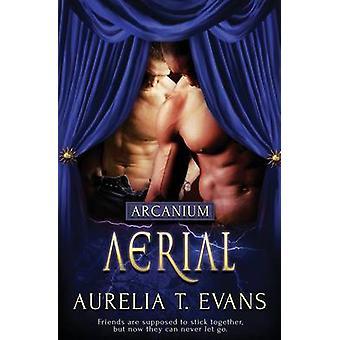 Arcanium Aerial by Evans & Aurelia T.