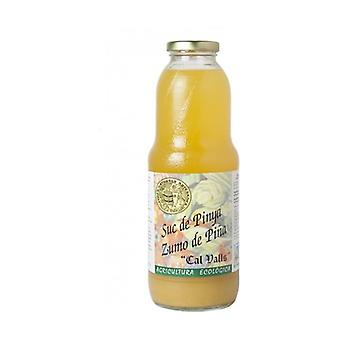 Ecological Pineapple Juice 1 L