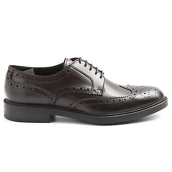 Zapato de Hombre Sangiorgio Cuero Marrón con Punciones