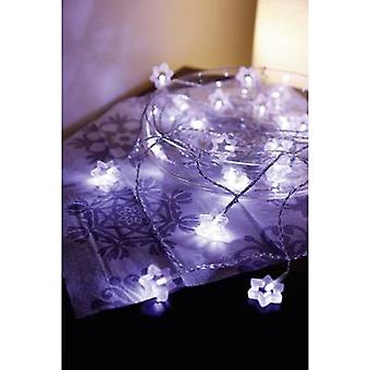 Polarlite 711776 Holiday lights (motif) Stars Inside mains-powered No. of bulbs 20 LED (monochrome) Warm white Illuminated length: 5.7 m