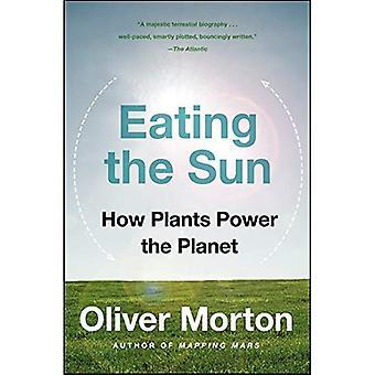 Essen die Sonne: wie Kraftwerke der Welt