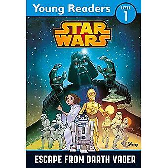 Star Wars: Fly från Darth Vader: en Star Wars Saga läsare (unga läsare nivå 1)