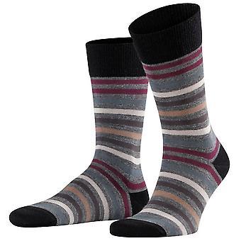 Falke tonet stripe sokker-mørk grå/lilla
