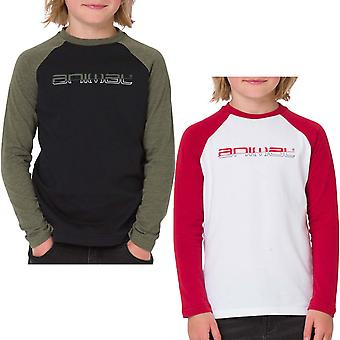Animal Boys Bert Graphic Chest Print Long Sleeve Crew Neck Tee Top T-shirt