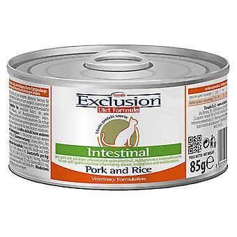 Exclusion Diet Formula Intestinal Cerdo y Arroz (Cats , Cat Food , Wet Food)