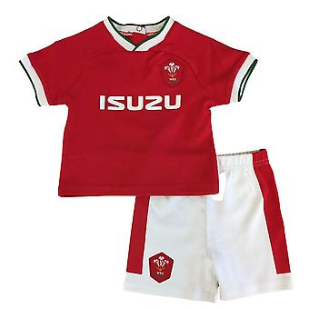 Wales WRU Rugby Baby/Toddler Home T-Shirt & Shorts Set | Red | 2021