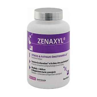 Zenaxyl Stress and Fatigue 90 capsules