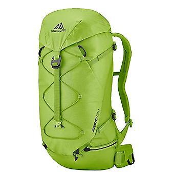 GREGORY Alpino 28 LT MD/LG - Travel backpack, color: Light green
