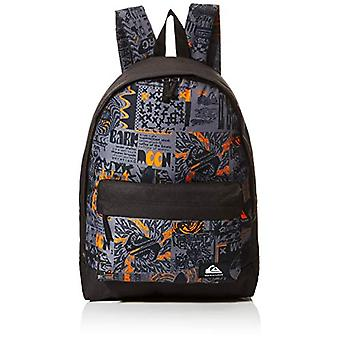 Quiksilver Everyday Poster Youth, Baby Backpack, Flame Orange, One Size Fits All