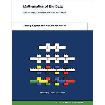 Mathematik von Big Data: Tabellen, Datenbanken, Matrizen und Graphiken (Mathematik von Big Data)