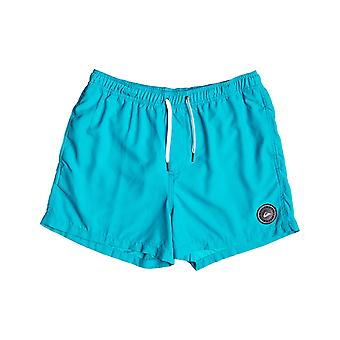 Quiksilver Everyday Volley 15 Shorts élastiques en bleu atomique