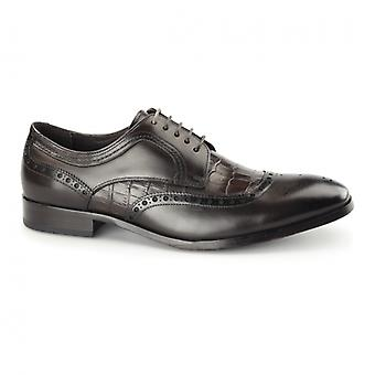 Azor Bianco Mens Leather Derby Brogues Brown