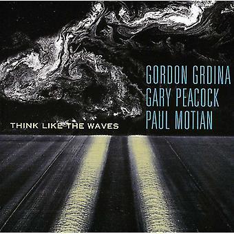 Grdina/Peacock/Motian - Think Like the Waves [SACD] USA import