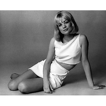 Judy Geeson ca sent 1960 fotoutskrift
