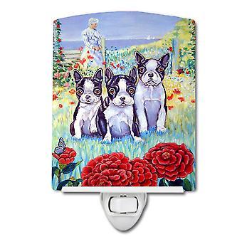 Carolines Treasures  7005CNL Boston Terrier Trio Ceramic Night Light