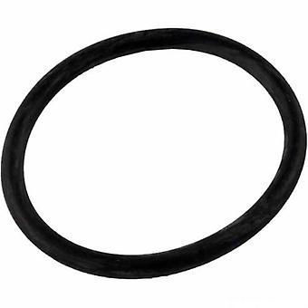 Jandy Zodiac R0449100 lock tätning med O-Ring Replacement Kit