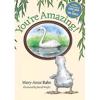 Youre Amazing  Hardcover  Audio Book Download by Rabe & MaryAnne