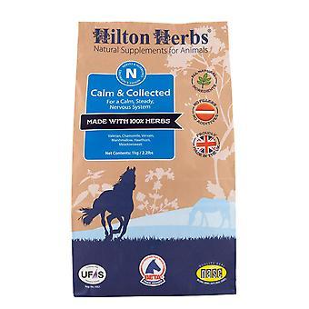 Hilton Herbs Calm & Collected Horse Supplement