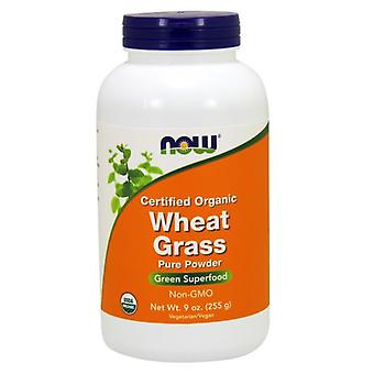 Now Foods Wheat Grass Pure Powder 255 gr
