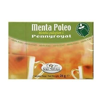 Mint Pennyroyal Infusions 20 units