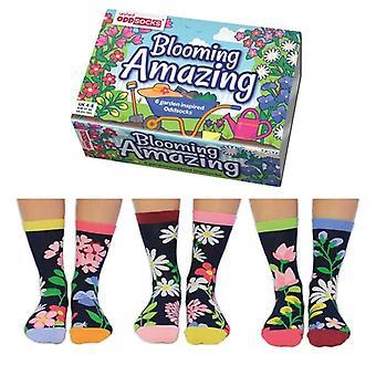United Oddsocks Floral Themed Socks