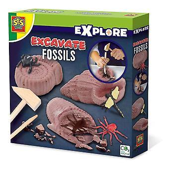 Exploration pour enfants Excaver des fossiles