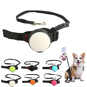 Pet Collars Dog Puppy Leash Dog Harnesses Wrist Traction Rope Pet Supplies