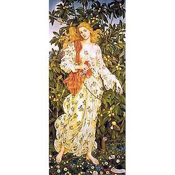 Flora-Plakat-Druck von Evelyn De Morgan (14 x 28)