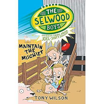 The Selwood Boys: Maintain the Mischief (The Selwood Boys)