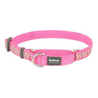 Red Dingo Correa Reflectante Ziggy Fucsia M (Dogs , Collars, Leads and Harnesses , Leads)