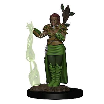 Donjons & Dragons Premium Human Female Druide