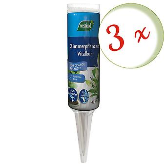 Sparset: 3 x WESTLAND® Houseplants Vital Cure, 40 ml